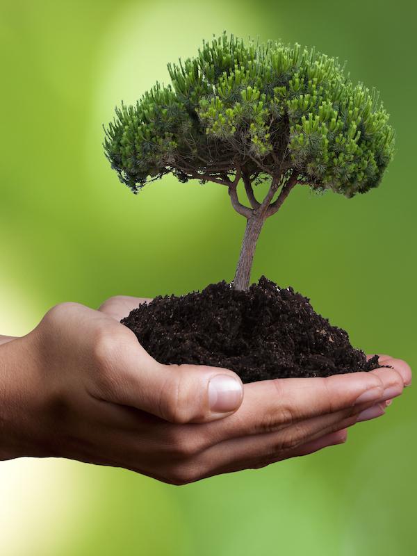 Pinta mal, los objetivos ambientales de la Agenda 2030: 'el informe definitivo'