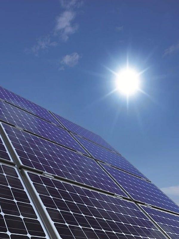 La Asociación de Naturalistas del Sureste presenta alegaciones a la central fotovoltaica Lorca Solar (Murcia)