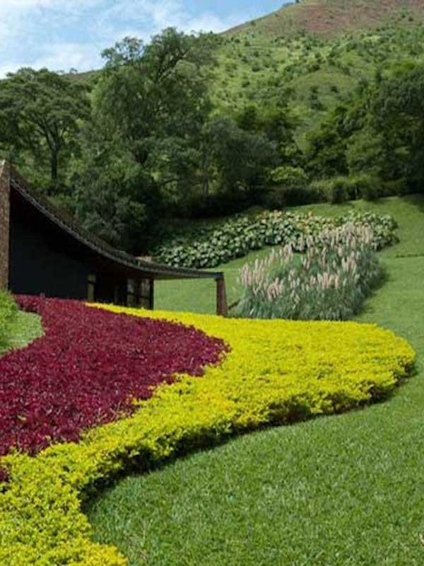 Impulsa México la creación de una red de jardines bioculturales como espacios de conocimiento colectivo