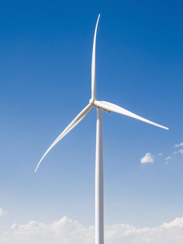Por la prohibición de los vertederos para palas de aerogeneradores en Europa