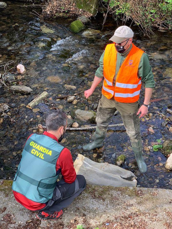 El SEPRONA participa en el rescate y suelta al medio natural de angulas