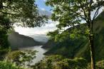 Día Mundial de los Bosques Tropicales 2021