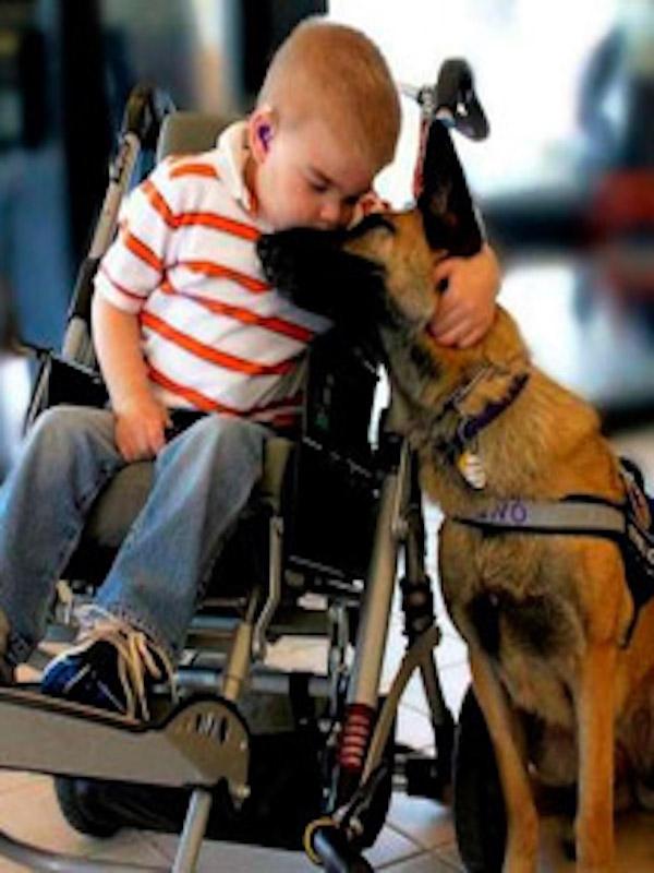 Perros los mejores amigos de los niños con diversidad funcional