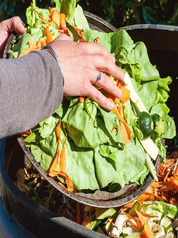 Casi un 20% de todos los alimentos disponibles en el Planeta se 'desperdician'