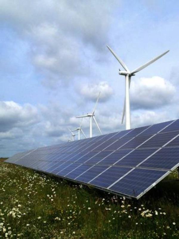 Polémica a cuenta de los parques eólicos y fotovoltaicos sobre territorios de rocín en Aragón