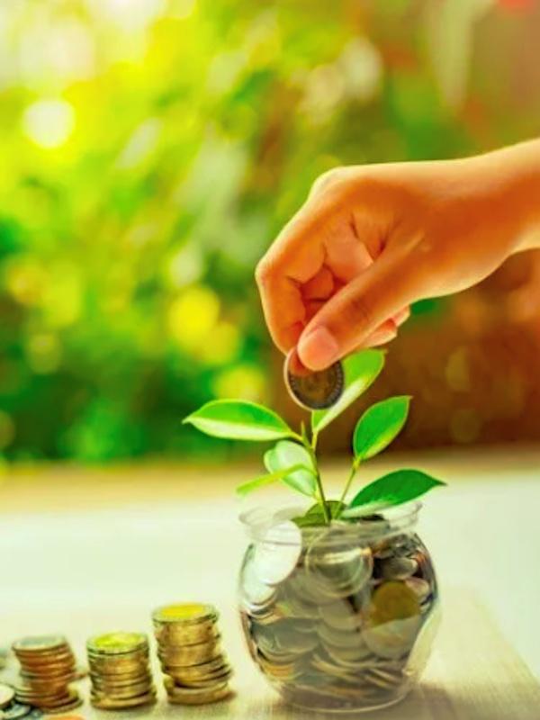 El importe para la recuperación verde tras el COVID-19 solo alcanza el 18% de lo previsto según el PNUMA