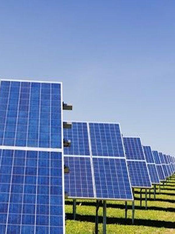 Invernaderos de paneles solares, todos salen ganando