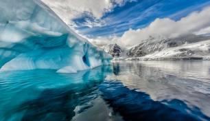 La gran sorpresa 'verde' que nos depara el Ártico
