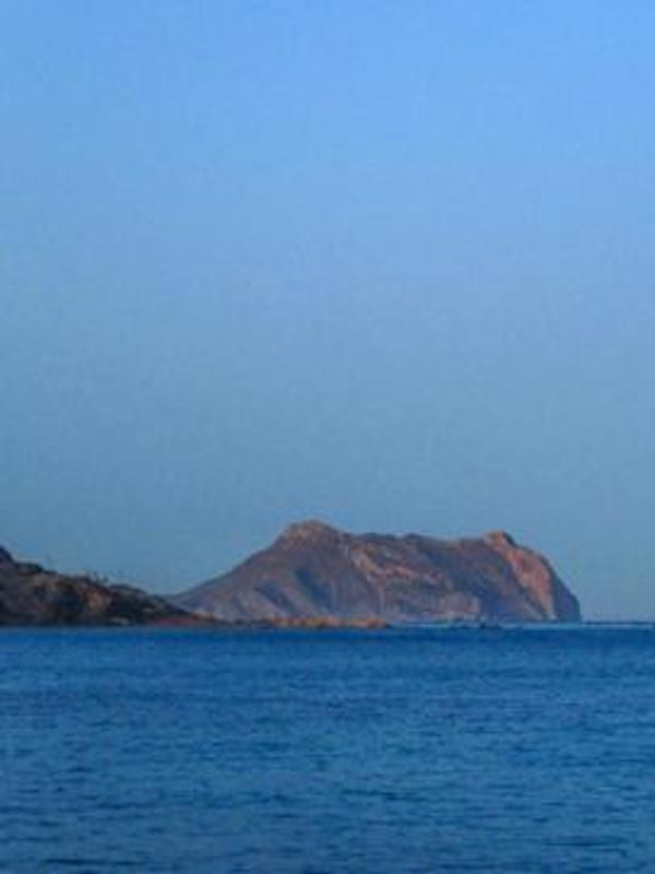 Murcia pretende aprovecharse del trabajo de ANSE en Cabo Cope sin garantizar su protección