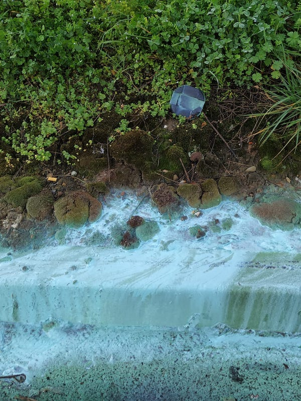 El 'escandalo' de la  contaminación en el río Asua