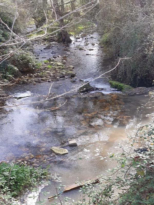 Asturias. Le salió barato al Ayuntamiento de Salas los continuos vertidos al río Nonaya durante años