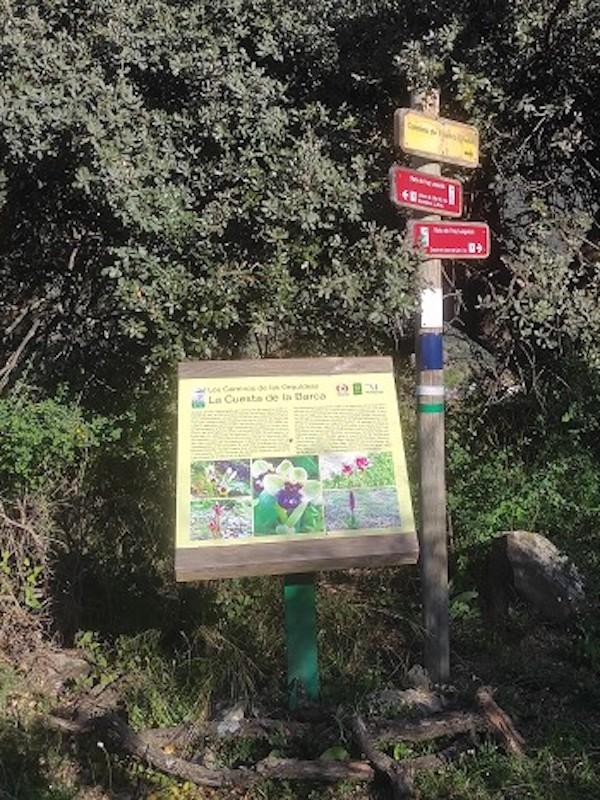 Premiados dos proyectos de la Diputación de Málaga que unen senderismo, educación ambiental y conservación de hábitats