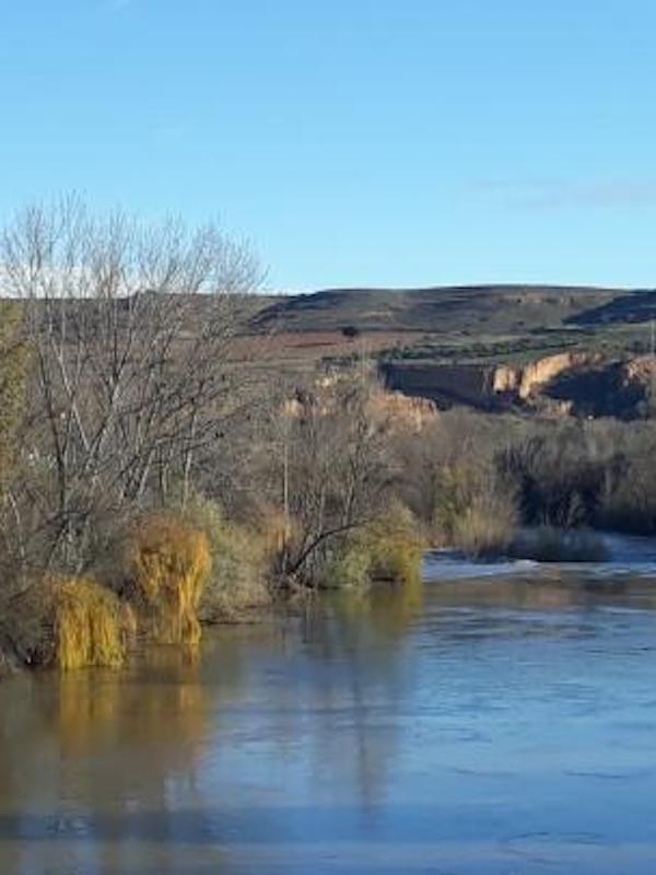 El nuevo Plan Hidrológico de Ebro tiene como objetivo alcanzar un buen estado ecológico para el 81% de sus masas de agua