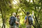 Ecoturismo 'revela' un rompecabezas climático