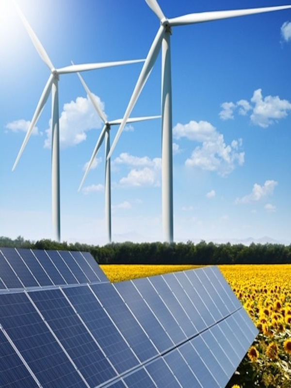 Los 'pasos básicos' para la transición energética y ecológica de España