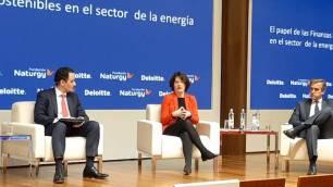 La mayoría de los bonos verdes emitidos en España a inversión en energías renovables y eficiencia energética