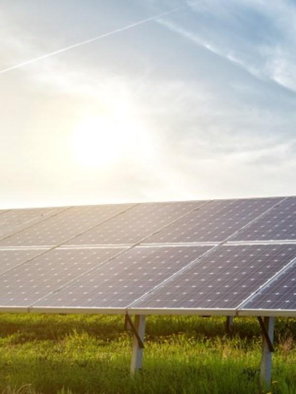 El sector agropecuario y la transición energética