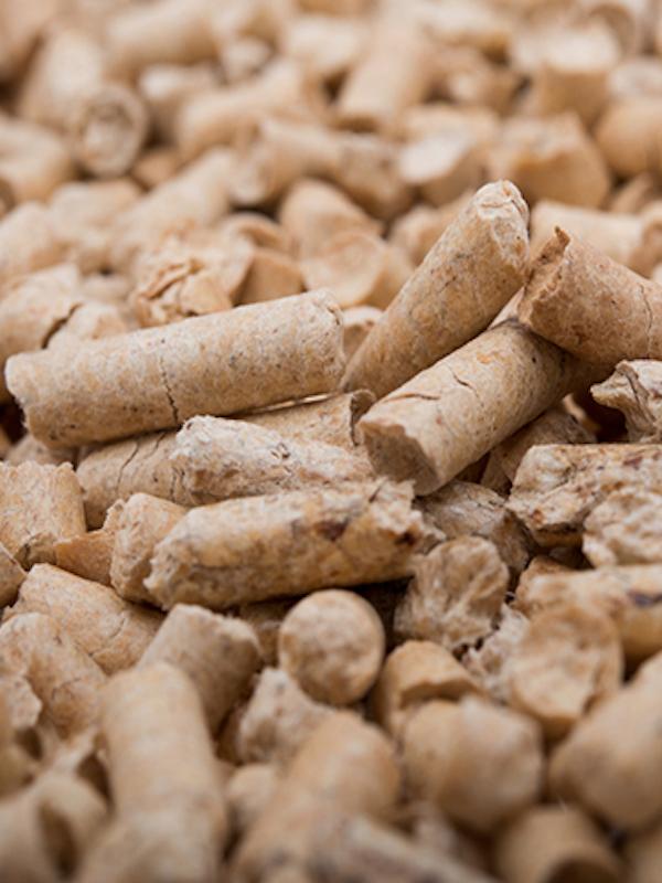Asociación Española de la Biomasa 'preside' el Consejo Europeo del Pellet