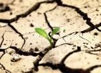 El 64% de los españoles considera que la recuperación económica debe abordar la crisis climática