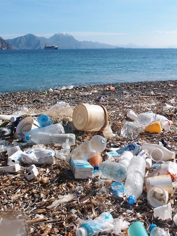 Azti ve acertada la estrategia de la UE de trabajar con el sector pesquero para reducir la basura marina