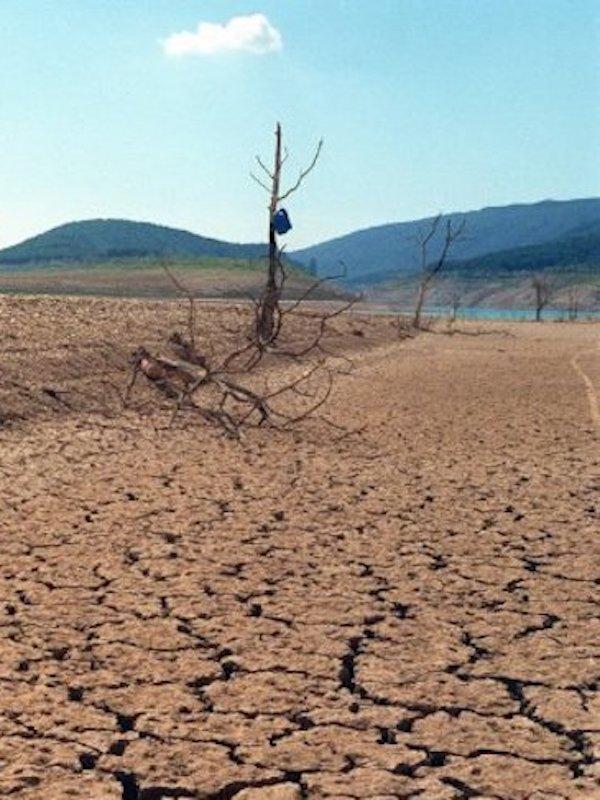 Las ONG lamentan la falta de ambición del texto de la ley de cambio climático: