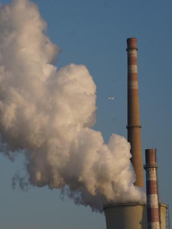 La MCP registra el meandro de Areatzea (Huarte) como el primer sumidero de CO2 de Navarra
