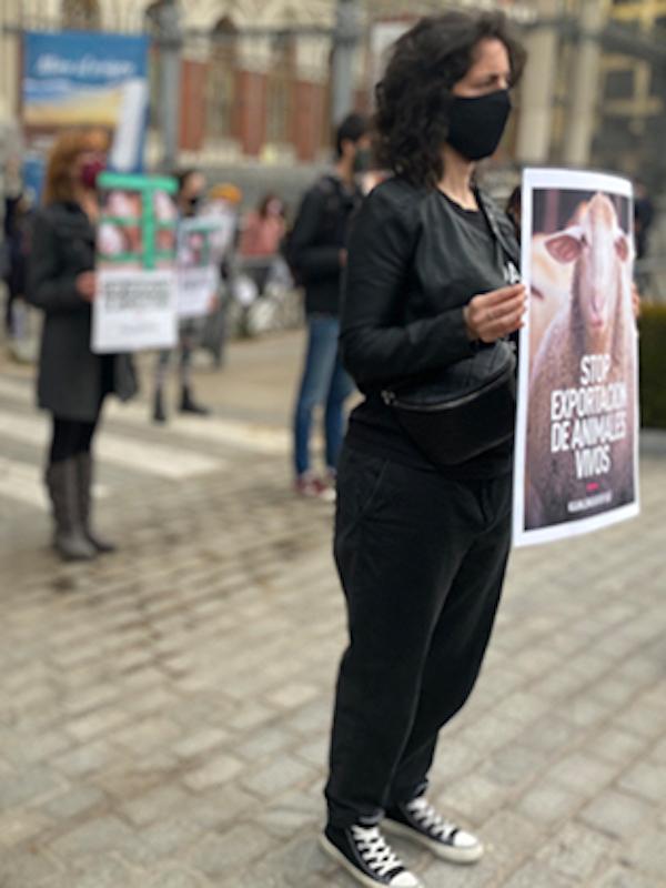 Protesta frente al Ministerio de Agricultura para que España prohíba la exportación de animales