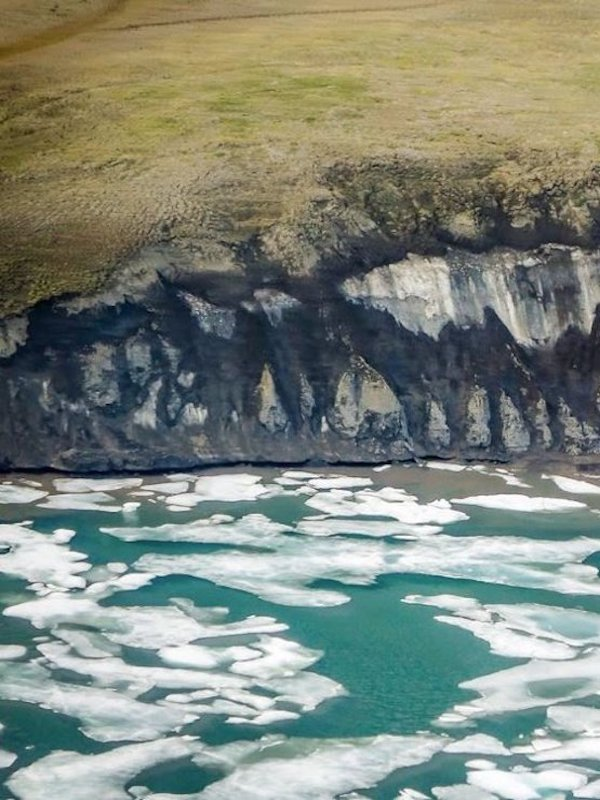 El Ártico cada día se hace más verde pero no absorbe lo que debería de CO2