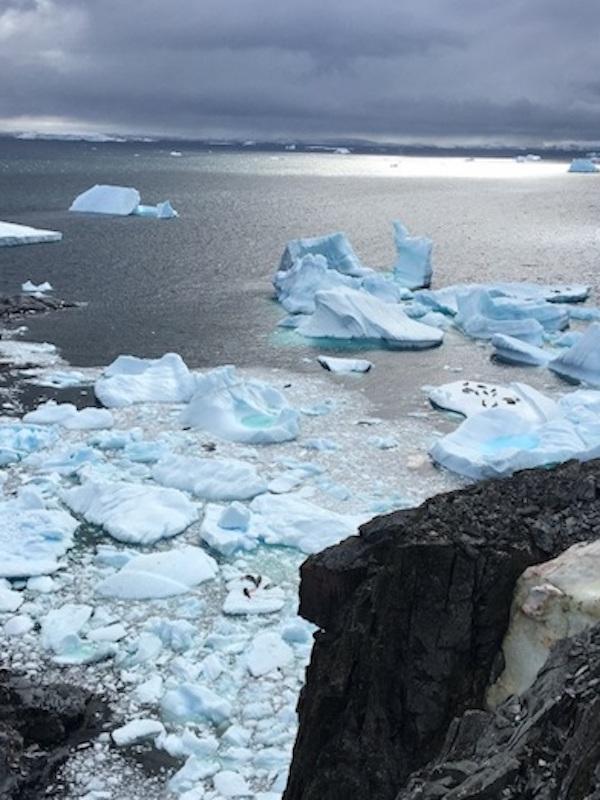 ¿Qué derivadas provocara la Antártida dentro de mil años?