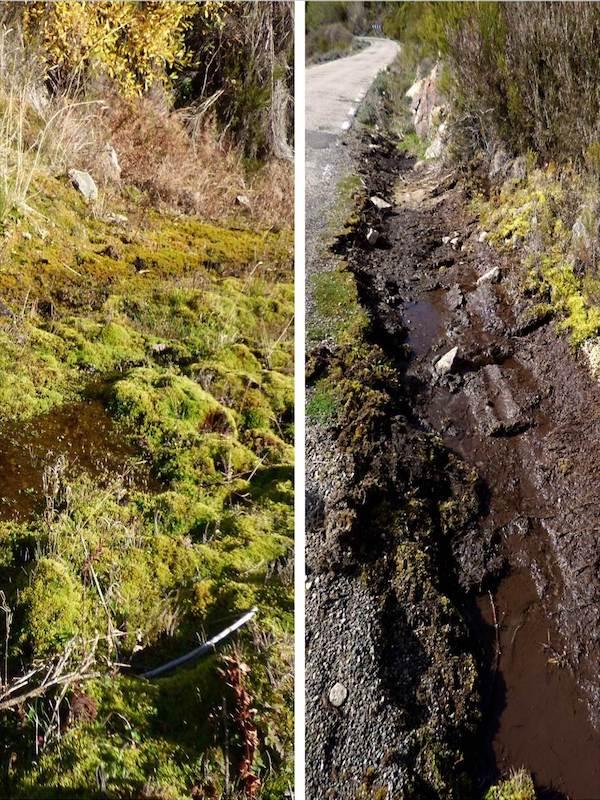 Denuncia contra el 'Servicio de Conservación de Carreteras de la Diputación de Cáceres'