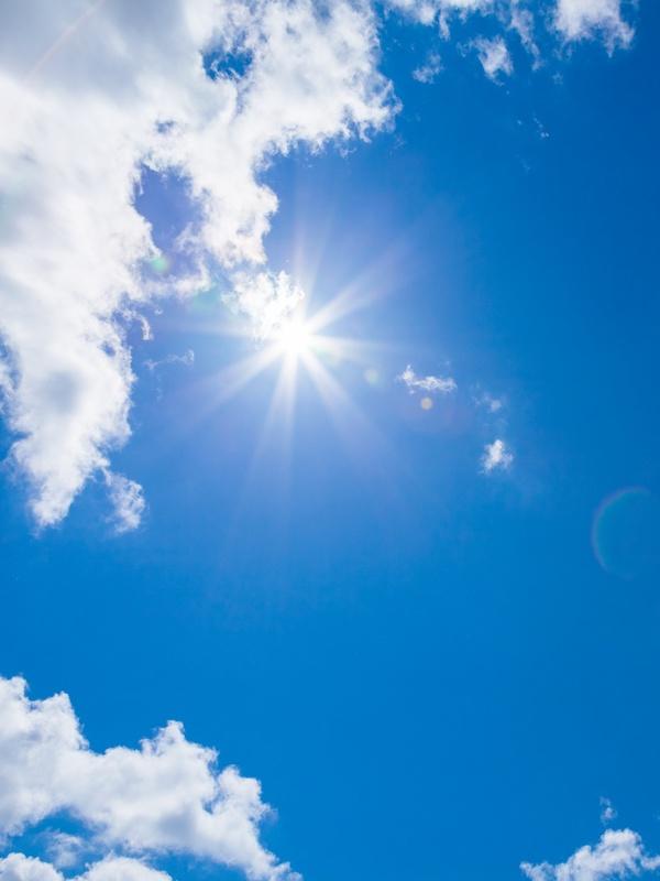 Solo el SOL nos salvara