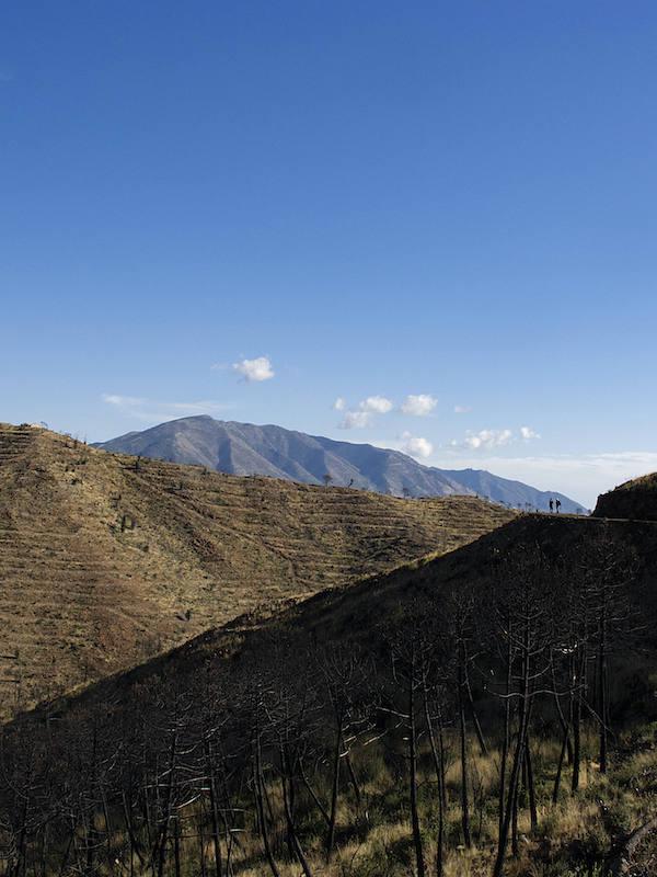 Destrozan el 'Parque Natural Los Alcornocales'