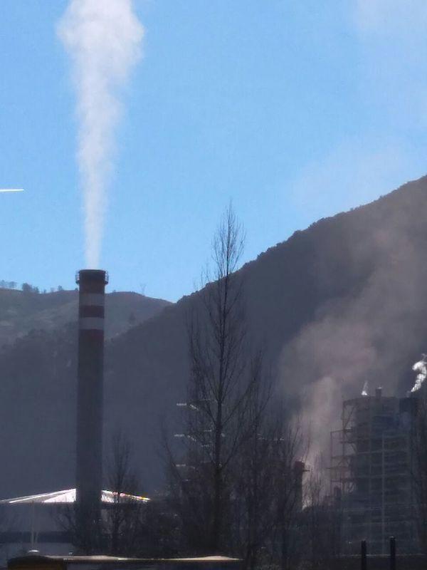 Hunosa solicita reconvertir la térmica de la Pereda en una incineradora de quema de residuos