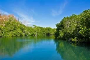 España destina cientos de millones a la conservación y restauración de los ecosistemas