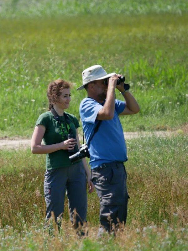 XXI Maratón Ornitológica de SEO/BirdLife