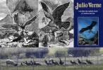 Los buitres y la percepción social 'errónea' de que estas aves matan ganado