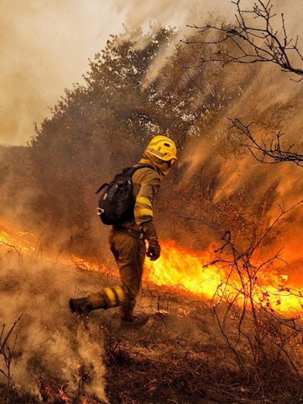 El ser humano y el fuego alteraron el medio ambiente