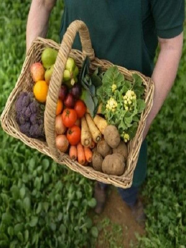 Extenda promociona los productos ecológicos andaluces a nivel mundial