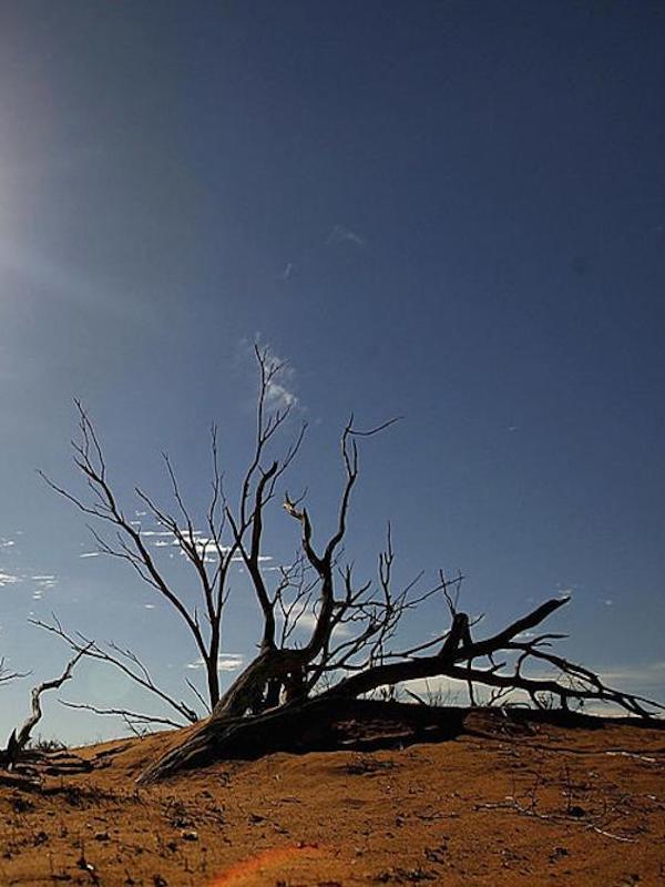 Parece ser que la 'ley del clima' no gusta a nadie