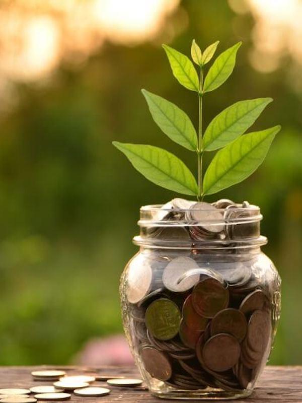 Inversión Verde. El sector financiero con la sostenibilidad