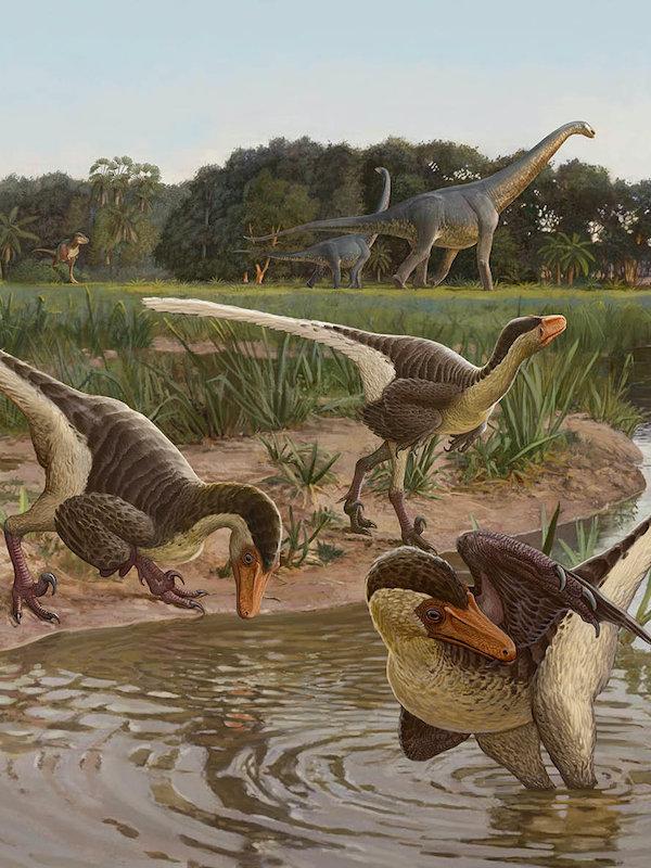 Revolucionando lo que sabíamos está el dinosaurio de Cuenca