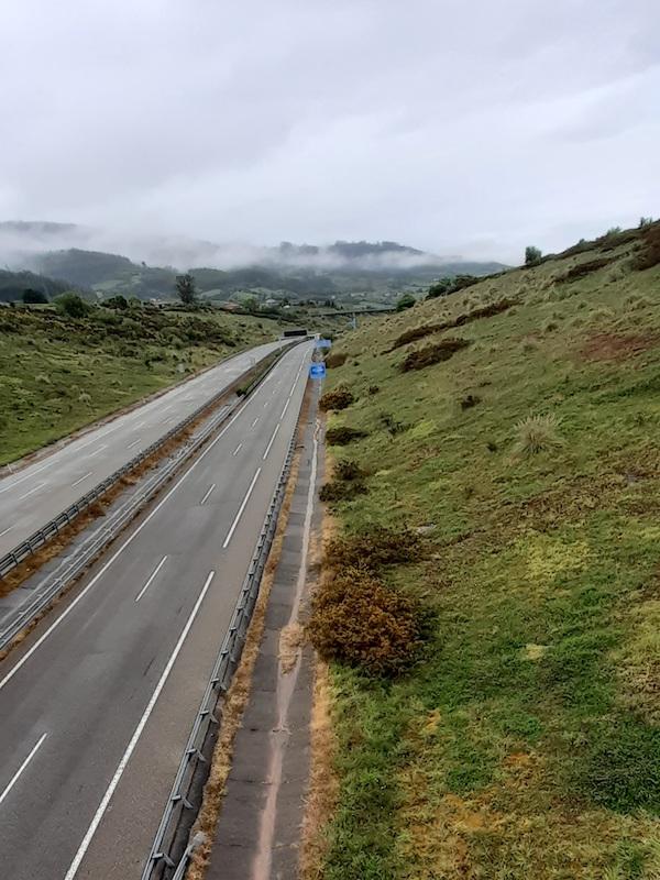 Asturias. Vuelven a usarse los peligrosos herbicidas en Villaviciosa, Sariego y Siero a pesar de los impactos que genera en el entorno