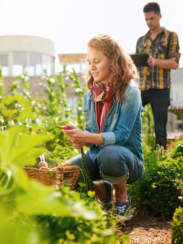 SOHISCERT informa: 'BBVA busca a los mejores productores sostenibles de España'