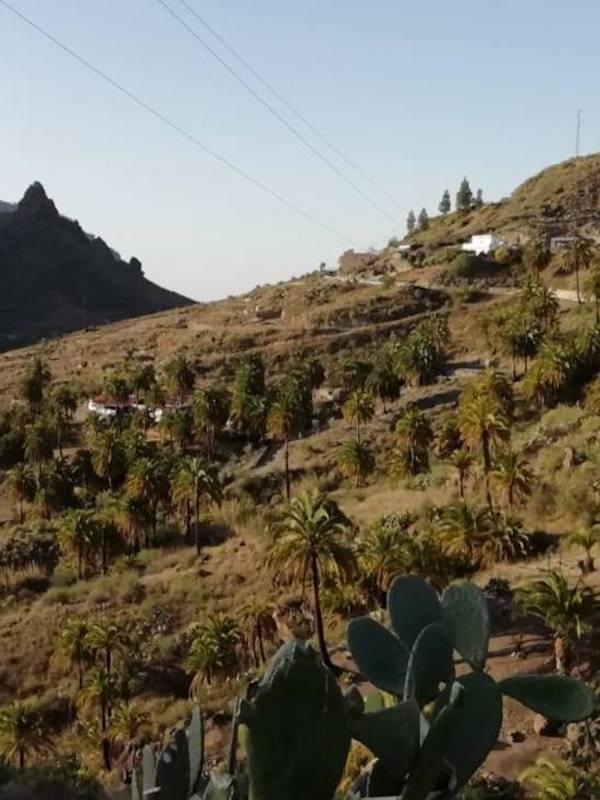 Canarias. Ben Magec reitera su oposición al actual proyecto de Central Hidroeléctrica Chira Soria