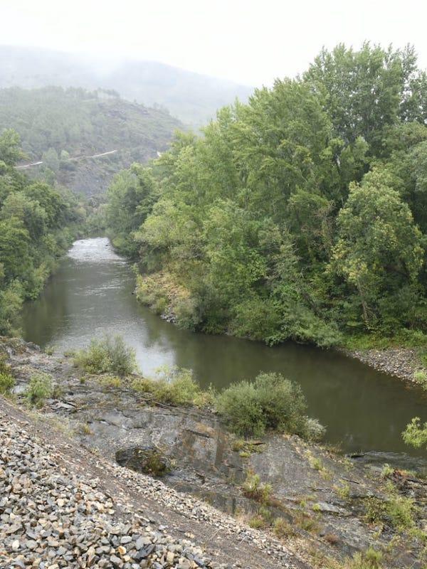 Navarra. Medio Ambiente aportará fondos a entidades locales para la recuperación del entorno fluvial