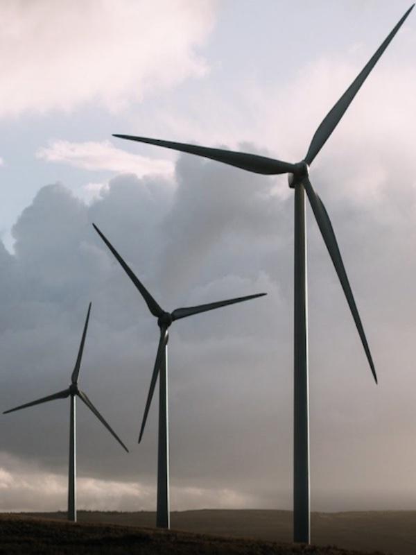 En 'La Rioja' se presentan alegaciones a los 'mega proyectos' eólicos