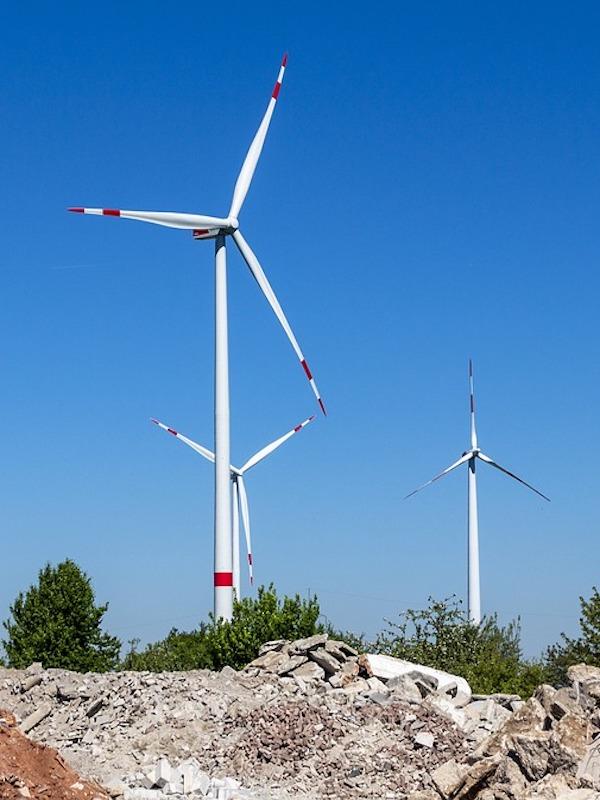 Energía Eólica, biodiversidad y desarrollo rural