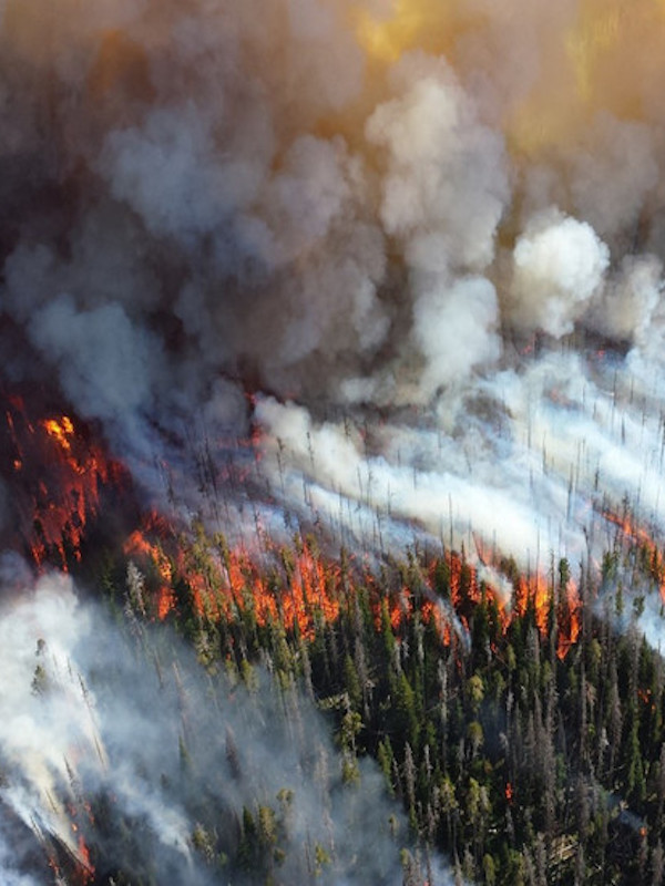 Incendios 'zombis' en Alaska y Canadá