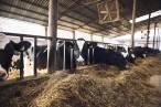 Primera mancomunidad energética mixta de España que promueve la economía circular agraria y la energía sostenible comunitaria