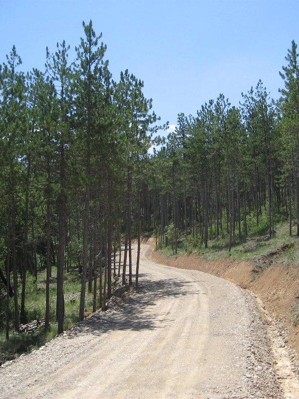 Mejora en el Camino Natural-Vía Verde del Plazaola